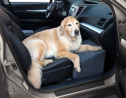 Floppy Seat Car Seat Cover